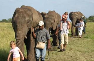 Just across the valley - walk with the elephants at the Elephant Santuary