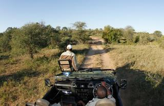 Umlani Open Game Drives