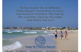 Come And Enjoy All That Cape St Francis Has To Offer!